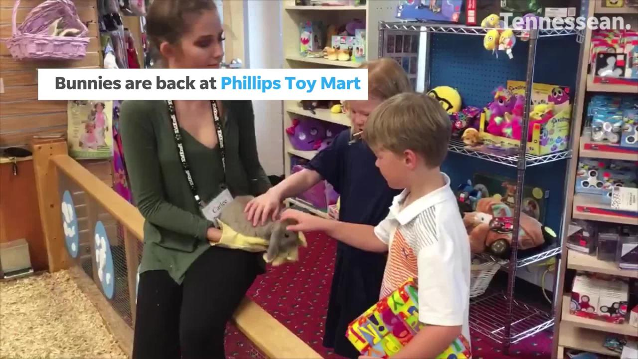 Ms Cheap talks about the bunnies at Philips Toy Mart