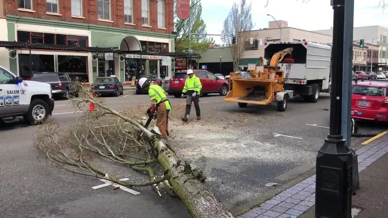 A tree has fallen onto Liberty Street NE, blocking traffic. A crew is working to remove it from the road.