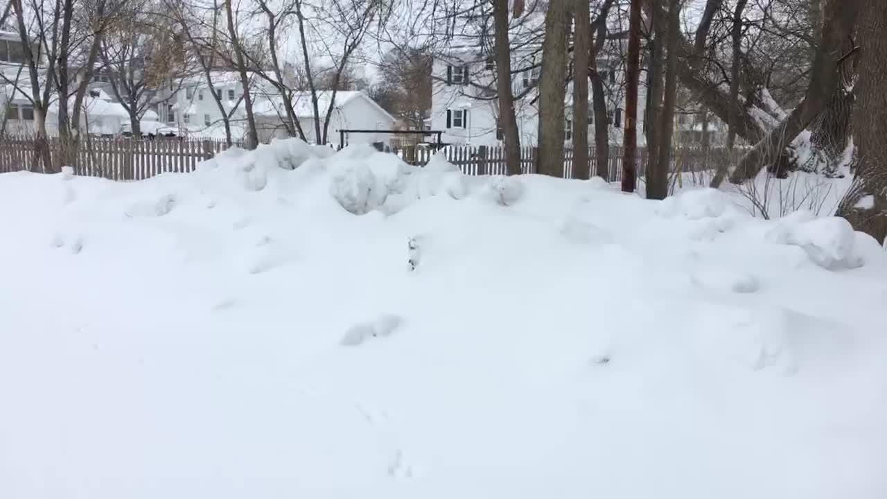Here's what it looks like when two feet of snow falls on Green Bay.