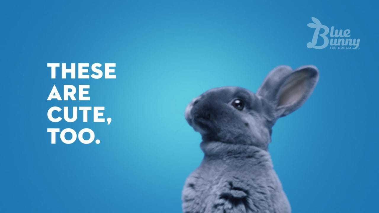 Iowa-based Wells Enterprises, which makes Blue Bunny ice cream, among other brands, is launching a new adult-focused ad campaign this spring.