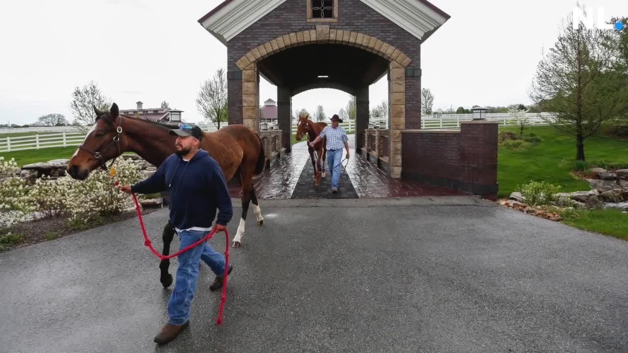 A look at the Springfield horse ranch that has a connection to the Kentucky Derby.