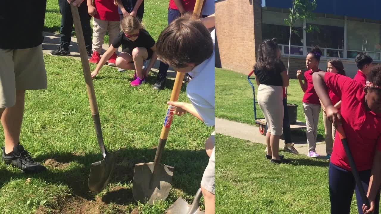 Vineland Environmental Commission donates trees to Vineland Public Schools to celebrate Arbor Day.