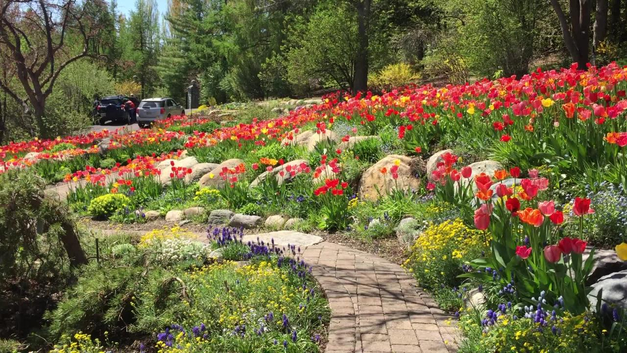 A sweeping look at just one section of the Kalispell home's garden
