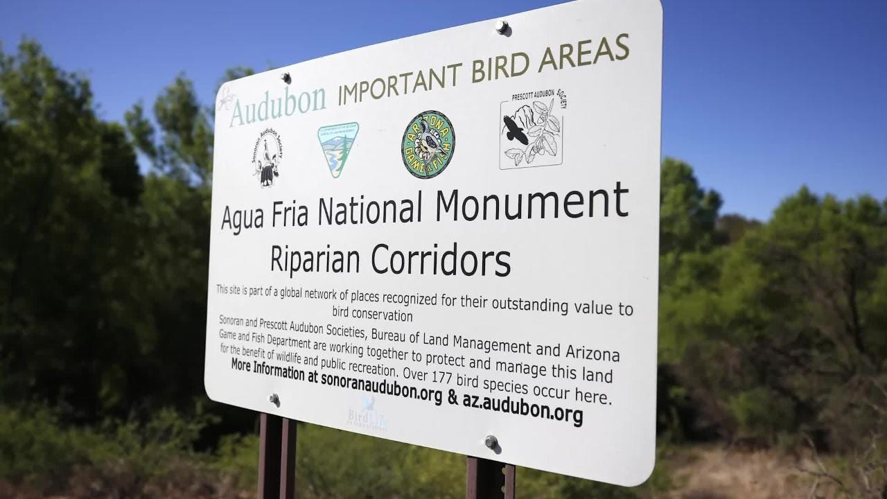 Audubon Arizona is looking for bird counting volunteers to help collect data about birds along the state's western rivers.