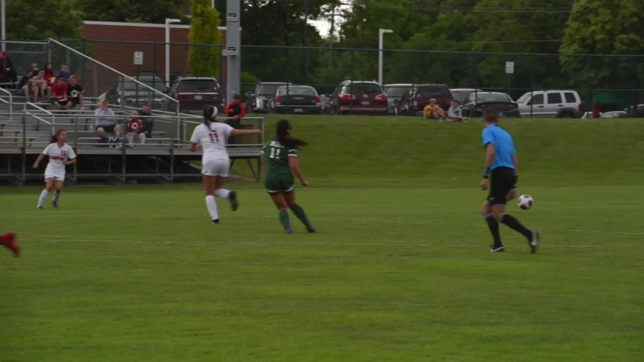 The Novi Wildcats advance to the next level after beating Canton 2-1.