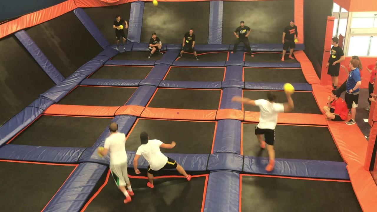 Teams from around Michigan, Ohio and Canada competed at Brighton Sky Zone's Ultimate Dodgeball Regional Qualifier. The winner will compete in Chicago.