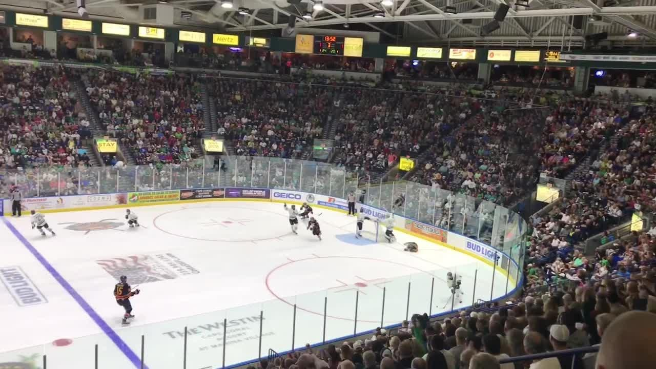 The Eagles defeated the Everblades 3-2 in game seven of the Kelly Cup Finals to win the Kelly Cup.