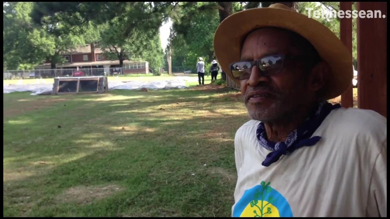 Ed Carlock, 70, grows vegetables at an urban farm in South Memphis created in  a partnership between Alpha Omega Veterans Services and Memphis Tilth.