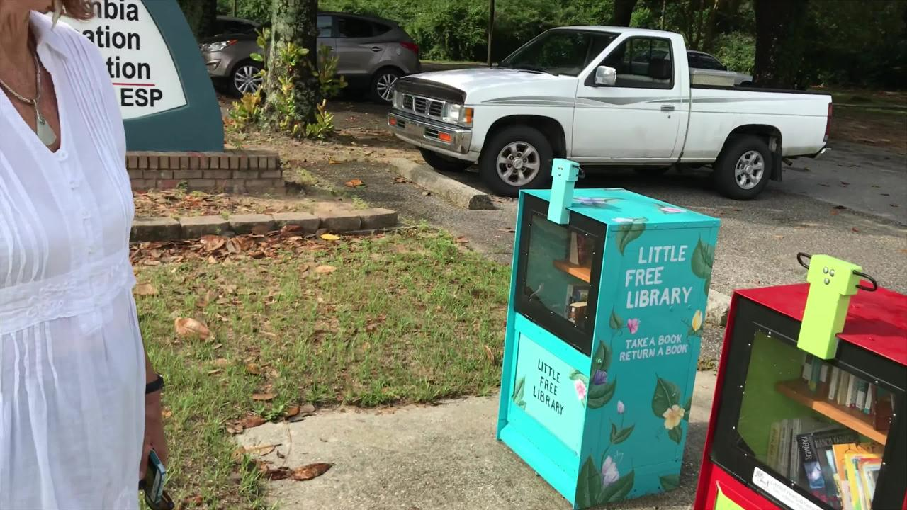 As more and more Little Free Libraries pop up, Pensacola's retired educators are going all in