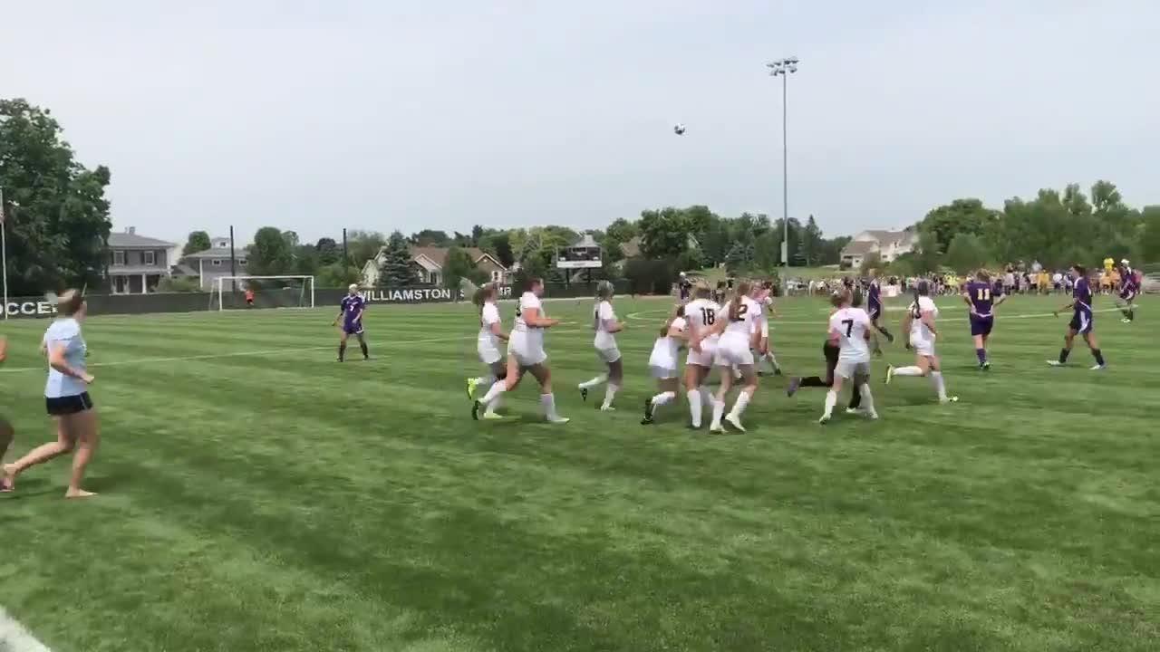 Lansing Christian girls soccer rushes field to celebrate win
