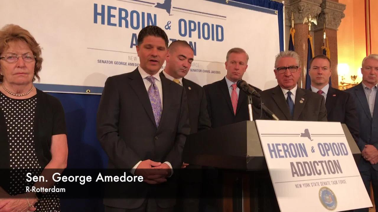 Senate Republicans on Tuesday, June 19, 2018, said New York needs a complete review of its spending on opioid treatments during a news conference at the state Capitol.