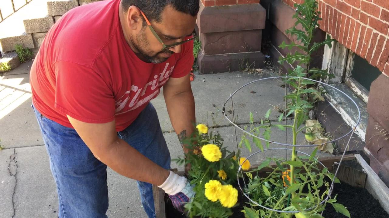 On a June afternoon in York, Sal Galdanez decided to beautify the city without asking for permission.