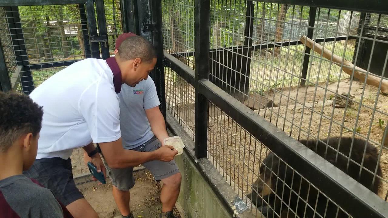 MSU basketball coach Dana Ford and his son Carson spoon feed a bear at the Dickerson Park Zoo.