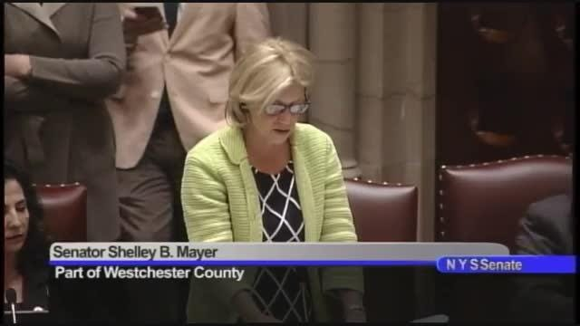 Sen. Shelley Mayer supports the nomination of James McCarty of Mamaroneck to the state Court of Claims, June 20, 2018.  The Senate confirmed him.
