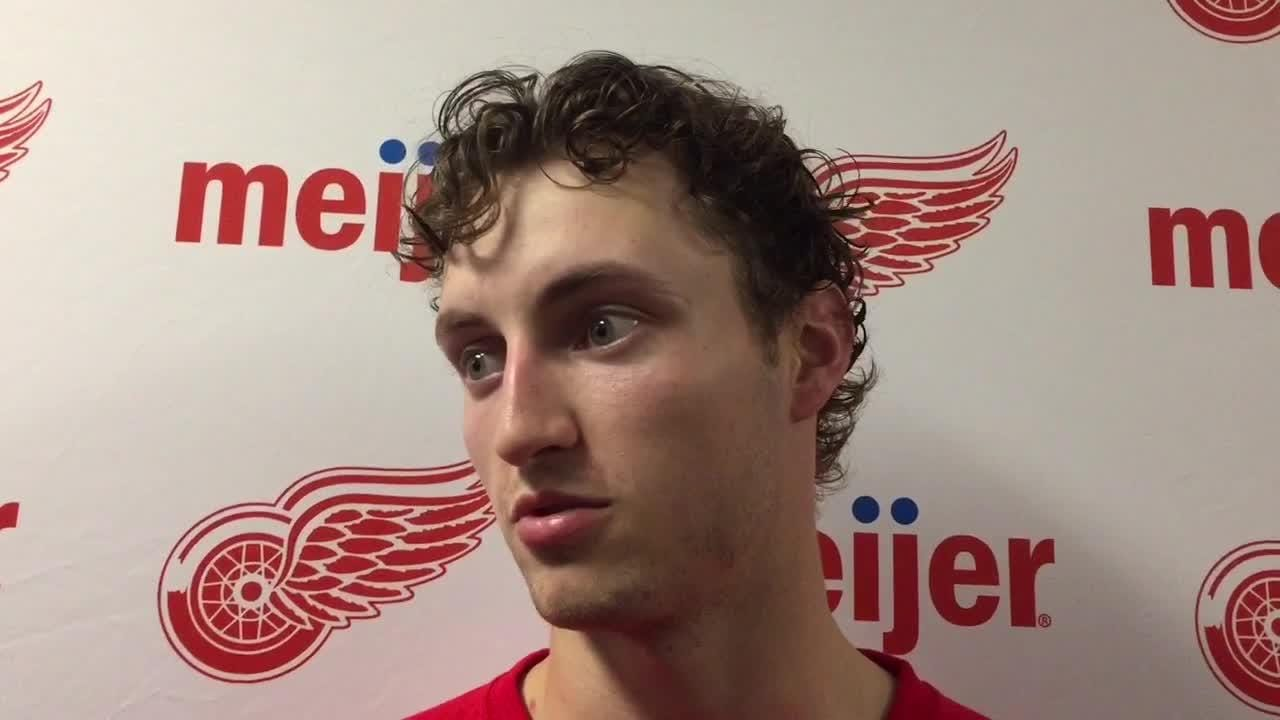 The Wings drafted David Pope in 2013. Now he's ready to push for a job, he says on June 26, 2018 at Little Caesars Arena.
