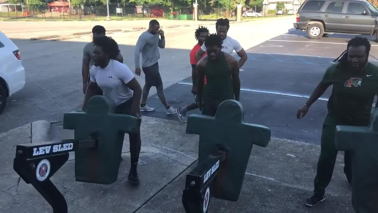 FAMU players work on core balance while hamming the blocking sled