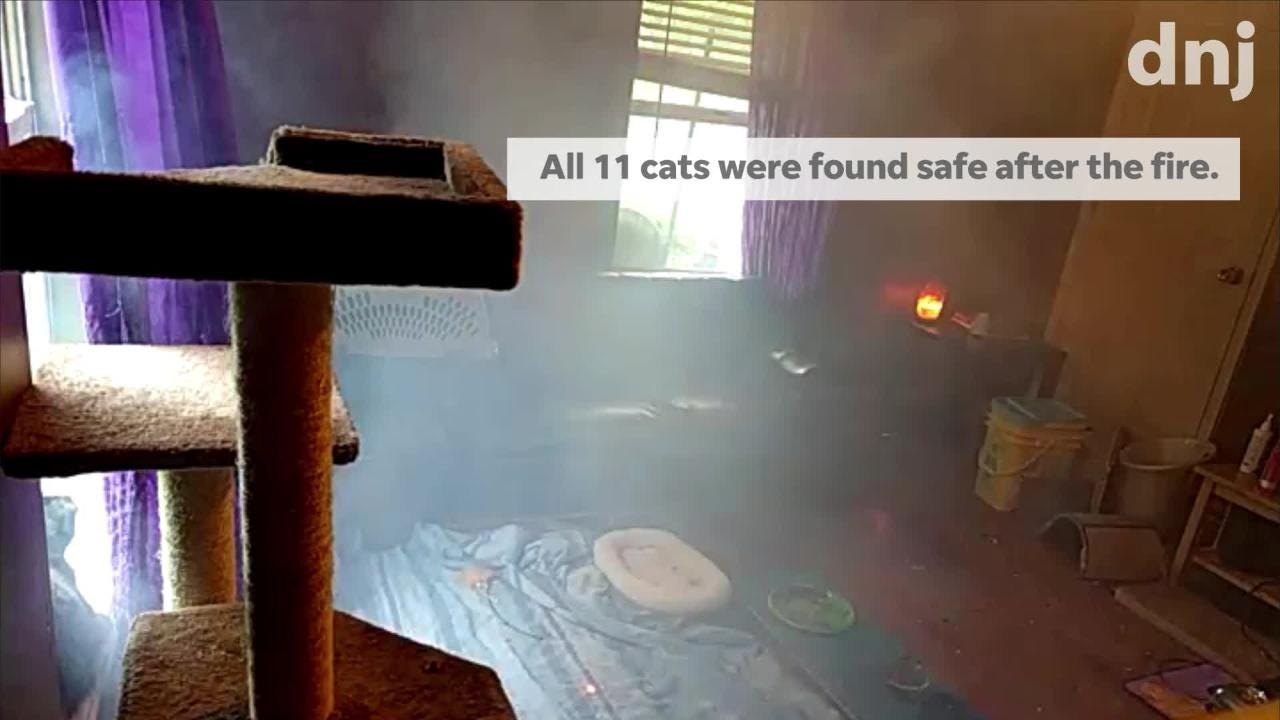 A motion sensor camera caught the moment a firework shot into the front bedroom of Matt Petty and Betty Bullard's Murfreesboro home Tuesday afternoon.