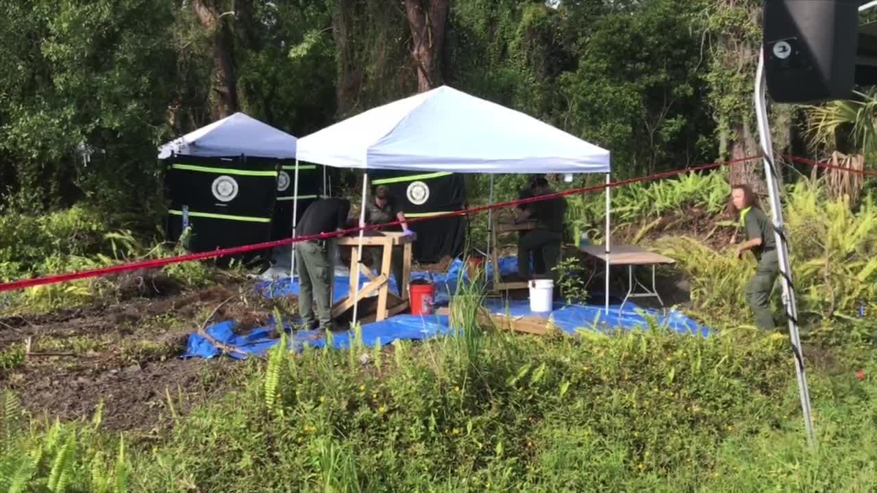 Area now under investigation after construction workers find remains in St. Lucie County along Kitterman Road.