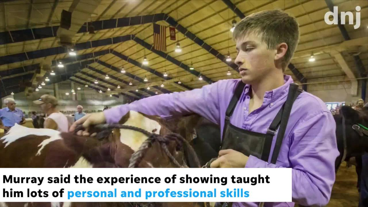 4-H/FFA member Murray Perkins raises cattle that will go to market, and his experience can help feed the hungry in Middle Tennessee