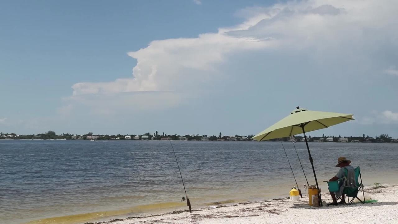Sanibel Realtor David Schuldenfrei talks about losing a $7 million home sale because of water quality issues.