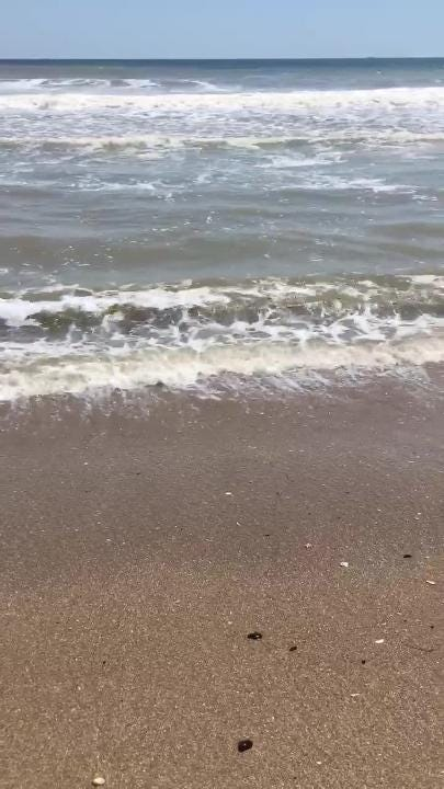 Beachgoers spotted a mysterious black substance washing up on Ortley Beach on Friday, July 13, 2018. Officials say not to worry. Reader submitted video.