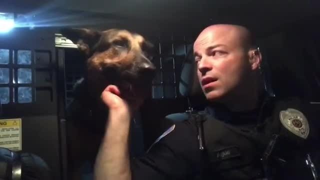 Lip sync battle: Police officers, human and K9, from South Londonderry Twp. join the fun