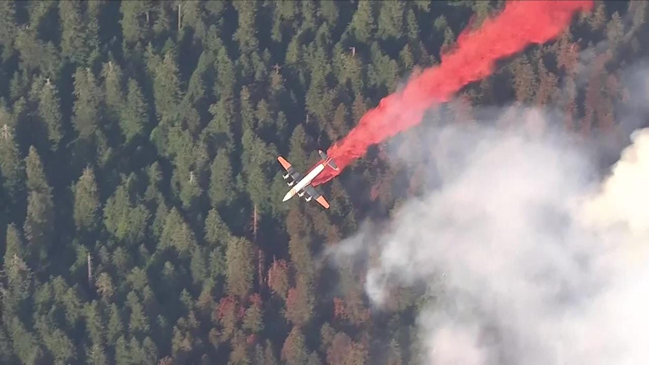A small fire inside Silver Falls State Park has prompted the closure of several backcountry trails and the evacuation of a YMCA summer camp.