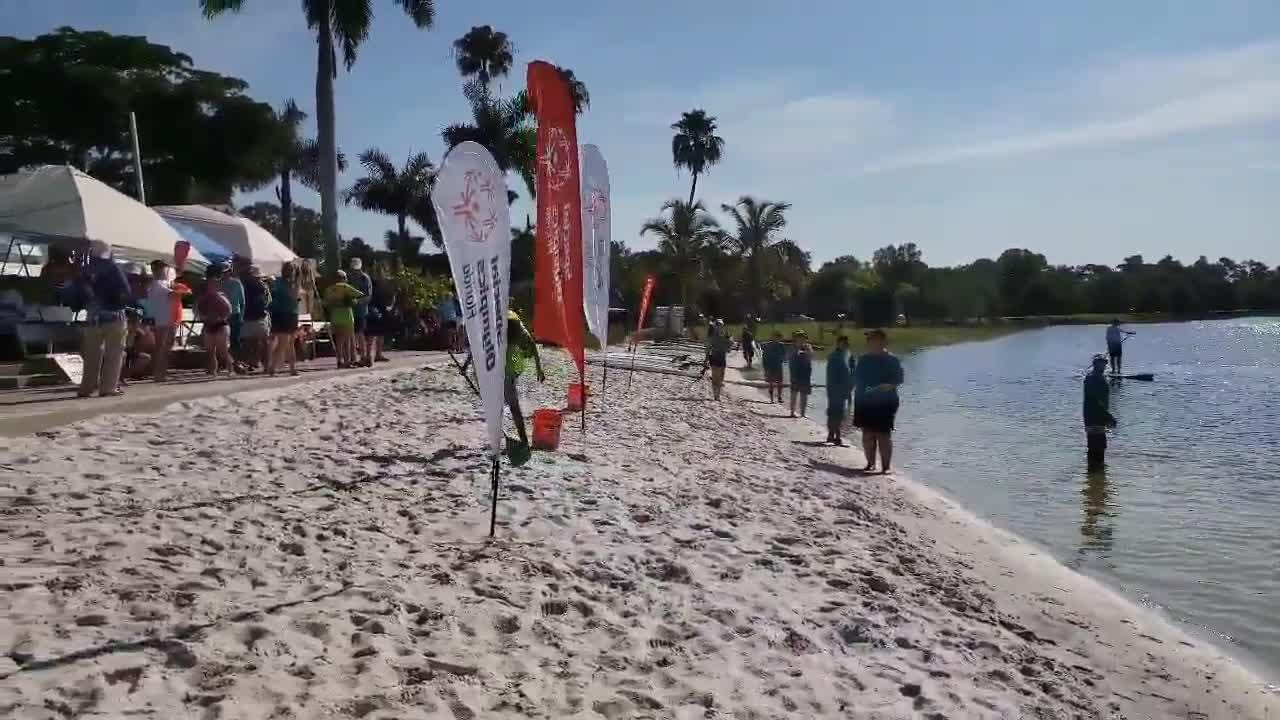Collier County hosted the Area 9 Standup Paddle Competition at Sugden Regional Park in East Naples on Saturday, July 14, 2018. When the athletes finish their race and pull up to the beach, they unclip their leash attached to their leg and run.