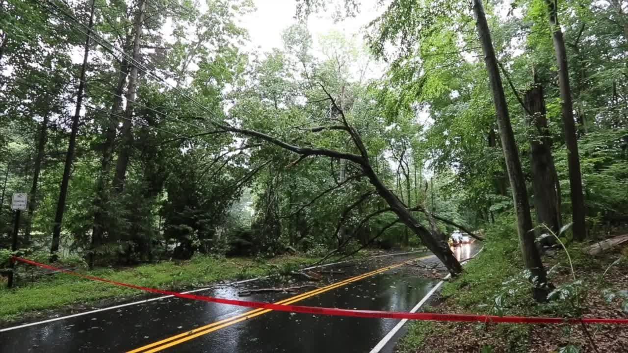 Video: Down tree across Cherry Lane in Airmont knocks out power to dozens