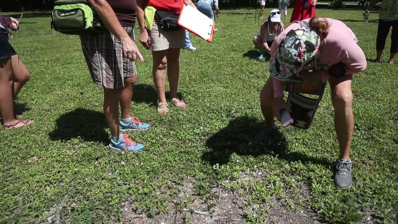 Butterflies get counted at the Edison & Ford Winter Estates