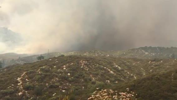 A fast-moving 800-acre wildfire is forcing evacuations in the San Jacinto Mountains in an area southwest of Idyllwild, authorities said.