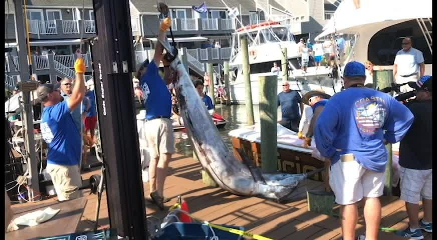 Angler Joe Rahman, New Jersey, talks about reeling in the 881lb blue marlin.