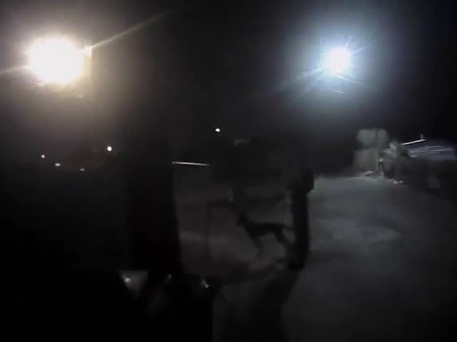 Body cam footage shows a Maricopa County Sheriff's Office deputy shooting a dog that attacked a K-9 in Youngtown.