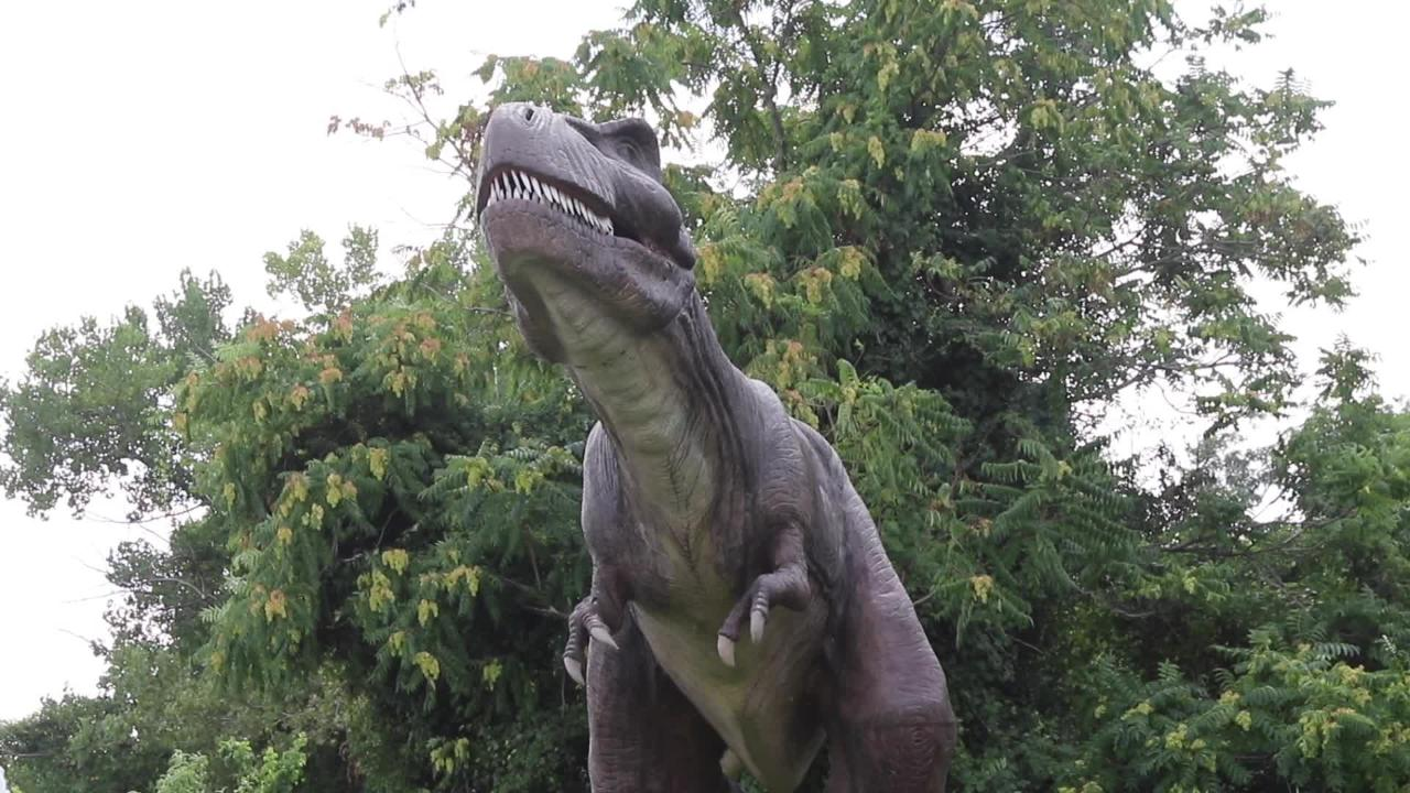 A look at the attraction Field Station Dinosaurs now in Leonia and looking to move to their permanent home in Teaneck.