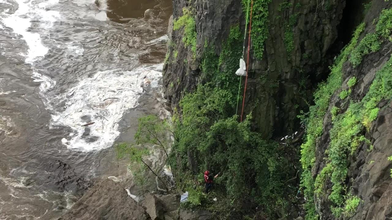 A stranded dog gets pulled up from base of Great Falls in a net-like bag after being rescued by a firefighter who had rappelled to the base of the falls.