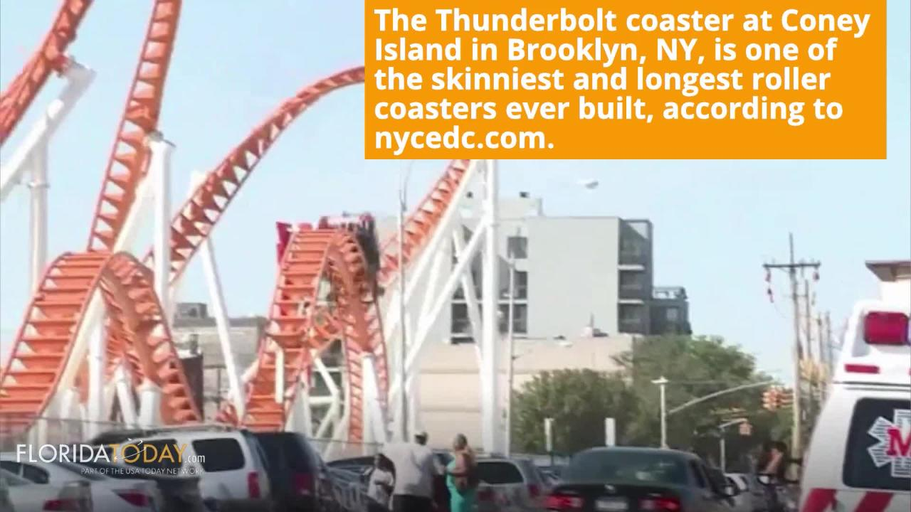 Are you a thrill seeker? Then head to your local fair or theme park for a roller coaster ride fix. Aug. 16th is National Roller Coaster Day.