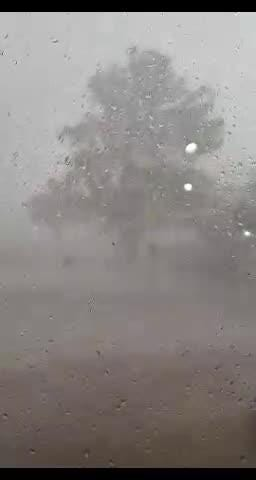 A Dobson Ranch Golf Course employee caught a tree snapping in half during a storm on camera. The course lost 57 trees in just one week in August.