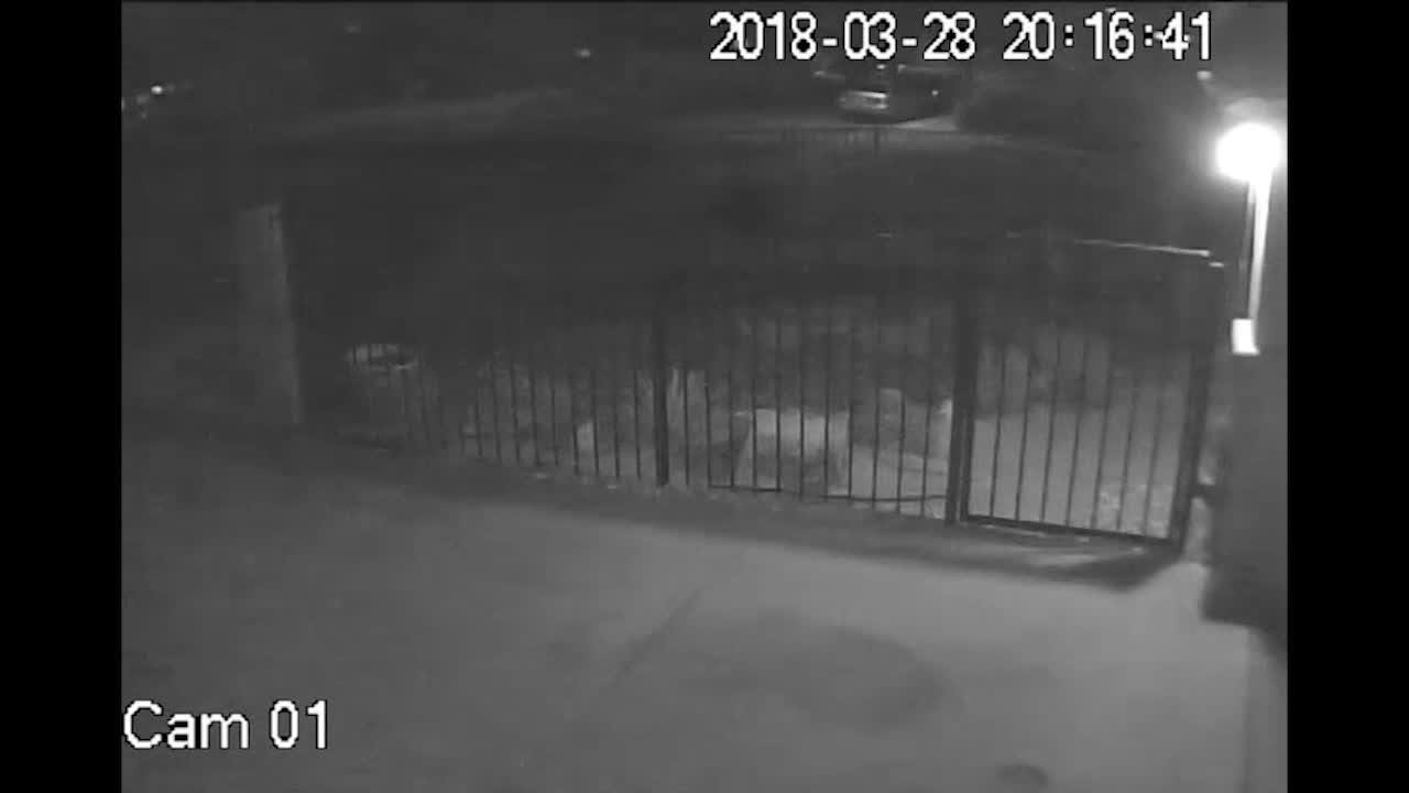 Cathedral City Police release video footage in connection with the murder of Ramon Diaz, a Palm Springs jiu-Jitsu studio owner killed in March 2018.
