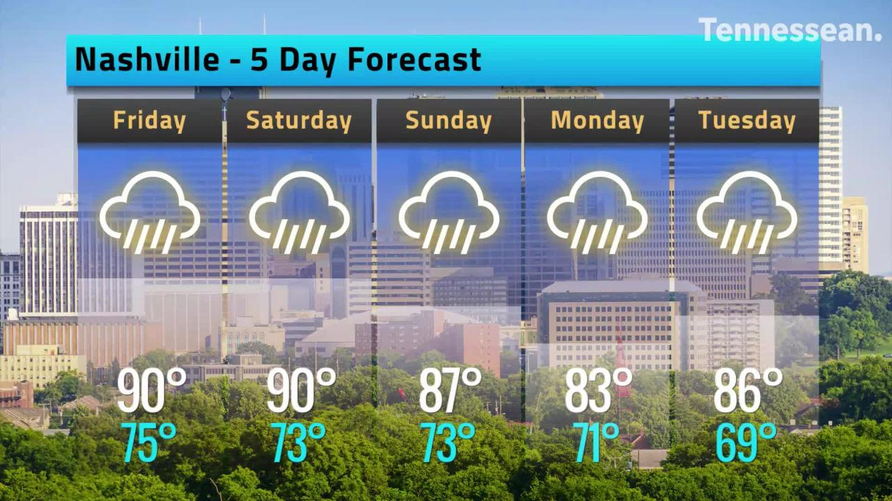 A look at the hourly weather for Nashville, TN