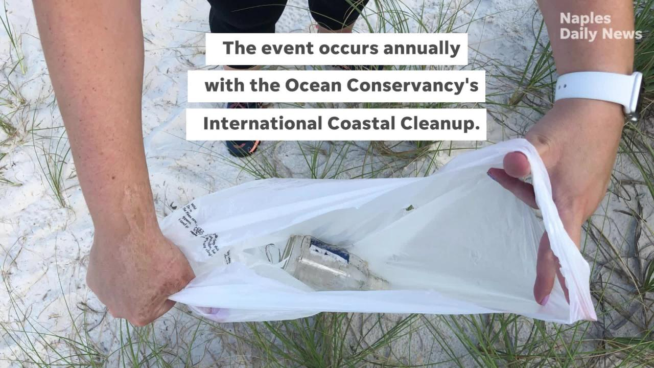It's about more than looks — a coastal cleanup event helped preserve not only the beauty of Collier county, but the wildlife, too.