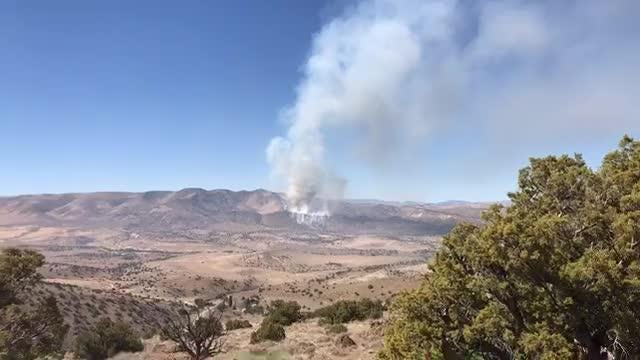 Brushfire near Palomino Valley