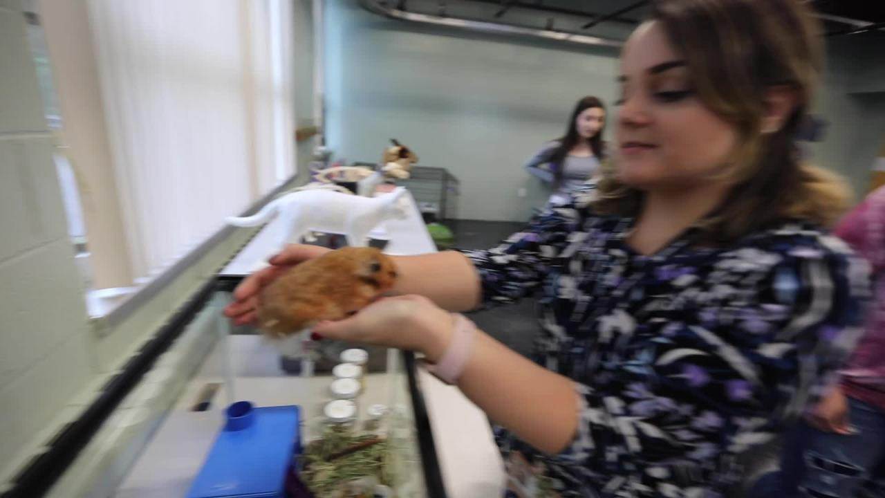 The new animal science class at Rockland BOCES in West Nyack Sept. 18, 2018.