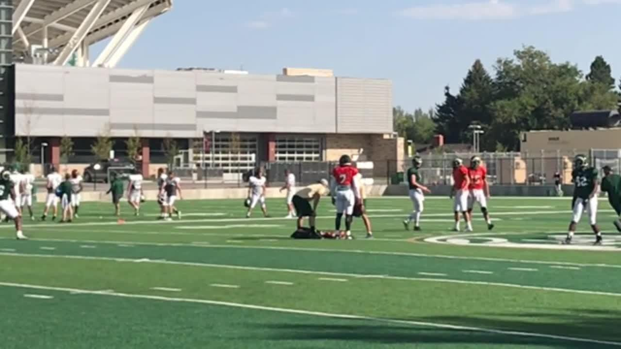 Rams need to put more emphasis on their ground game to be successful this season, Mike Bobo says