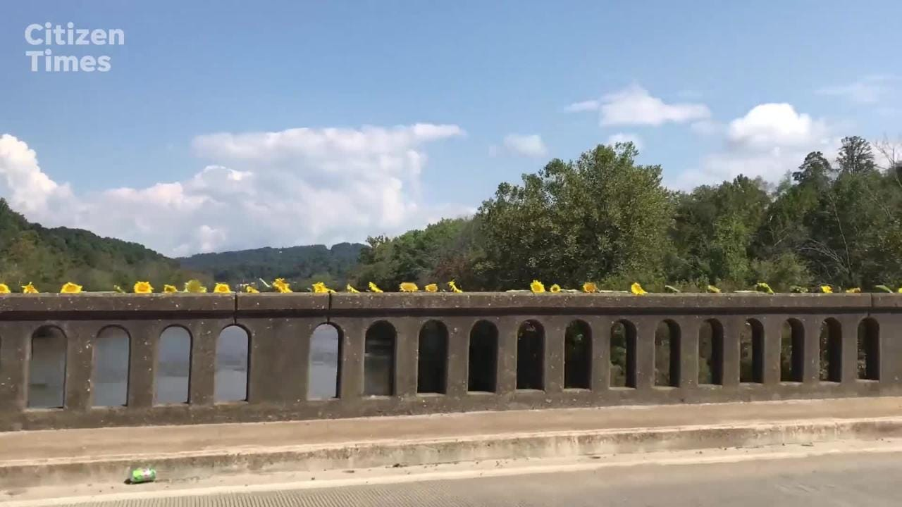 Members of the Olivette community decorated the Craggy Bridge in Woodfin with sunflowers from their organic garden.