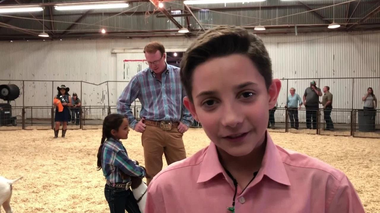 Area students show off their livestock at the El Paso County Livestock Show at the El Paso County Coliseum through Saturday.