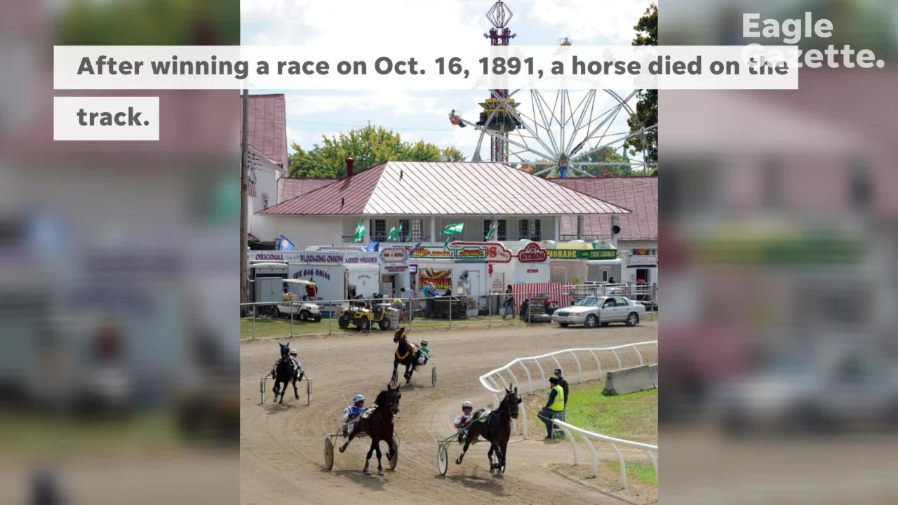 Little-known historic information about the Fairfield County Fairgrounds and its buildings.