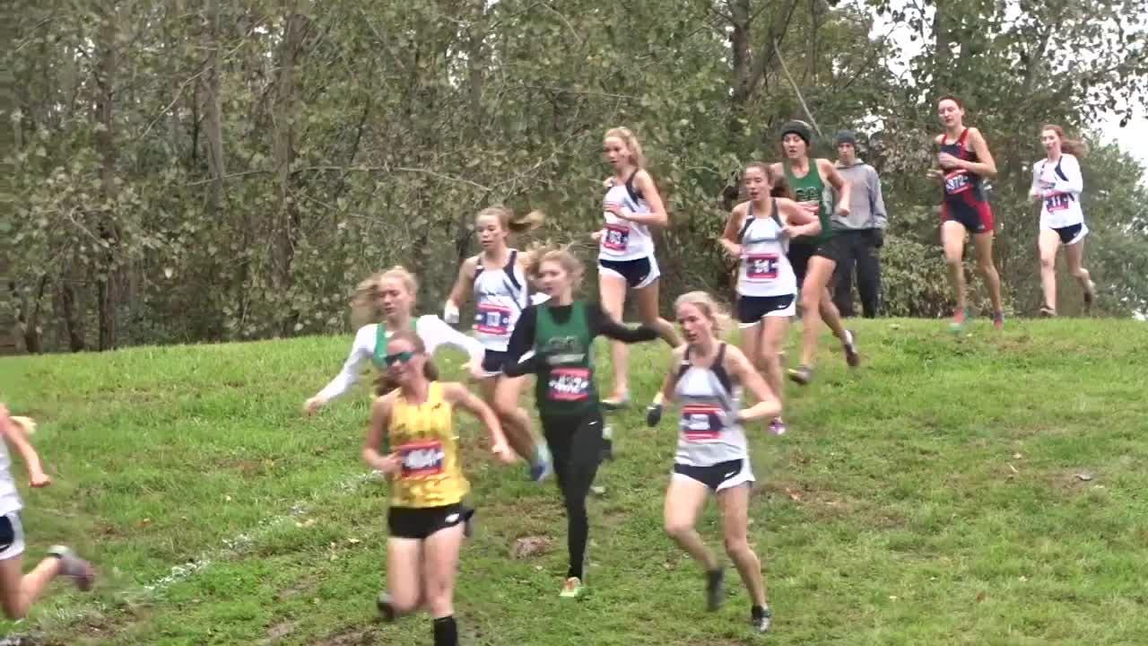 Heath's boys and girls, Watkins Memorial's boys and Granville's girls won team titles during the Licking County League meet.