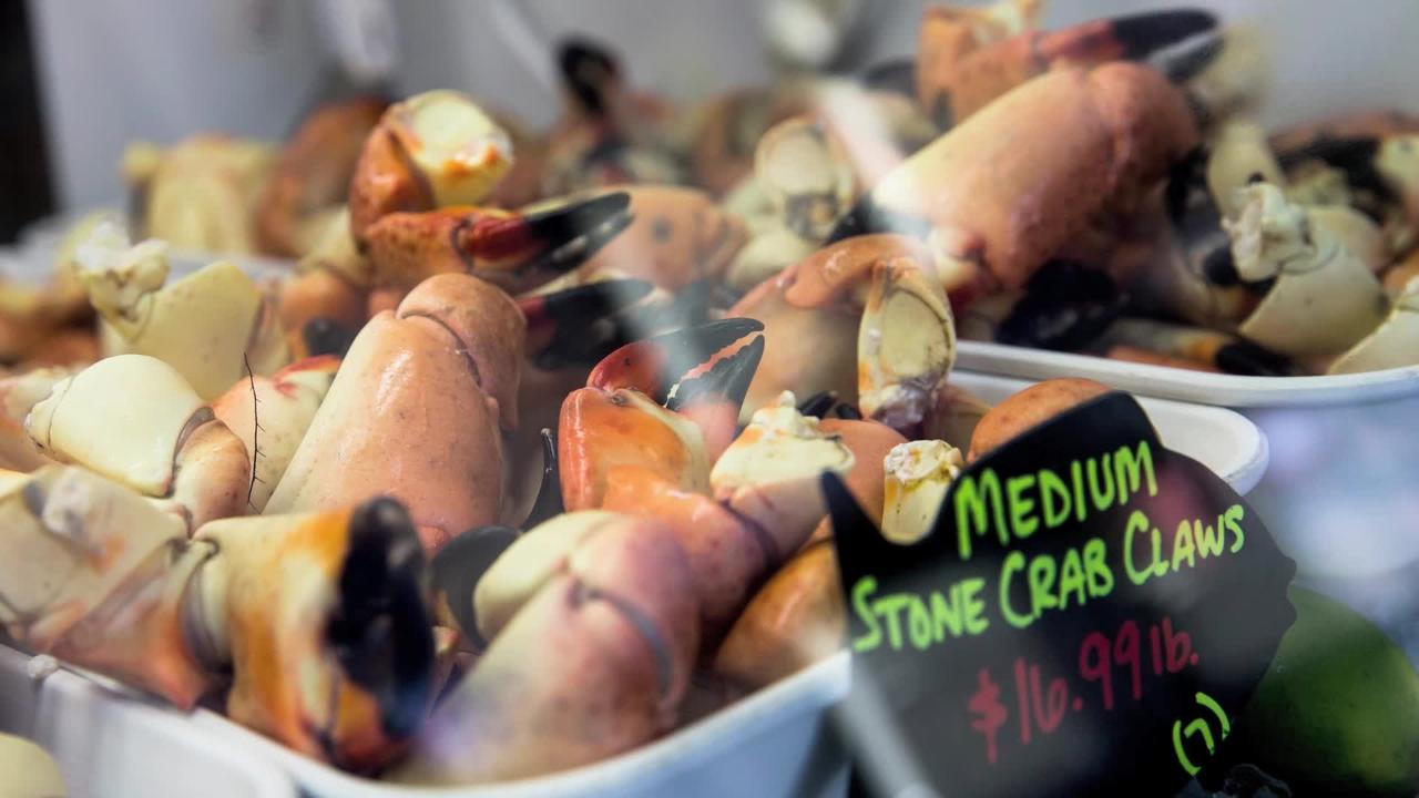 Must Know Monday: Local restaurants gear up for start of stone crab season today
