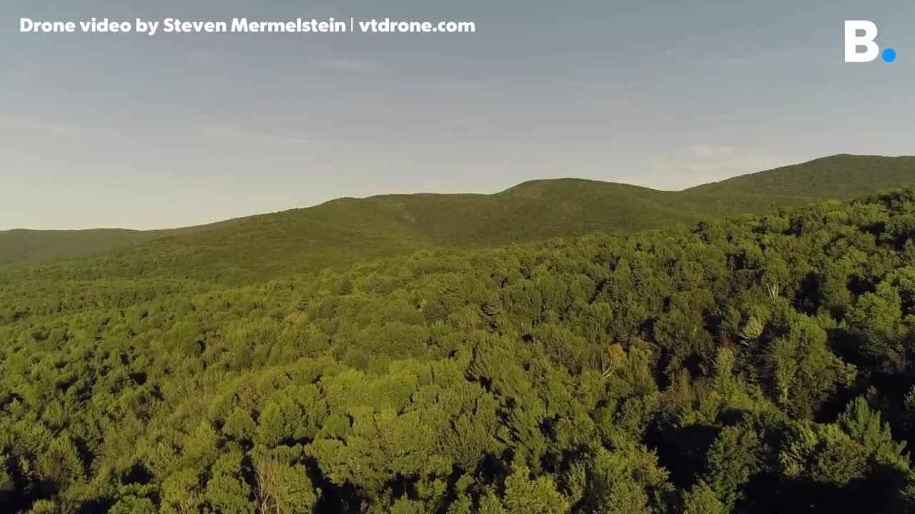 766 acres on Brownsville Road in Stowe bordering the C.C. Putnam State Forest and the Worcester Mountains is up for sale for $9.95 million.