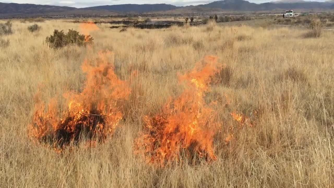 This video of a wildland fire investigation training course in Minden, Nev., shows how quickly fireworks can ignite a fast-spreading wildland fire.